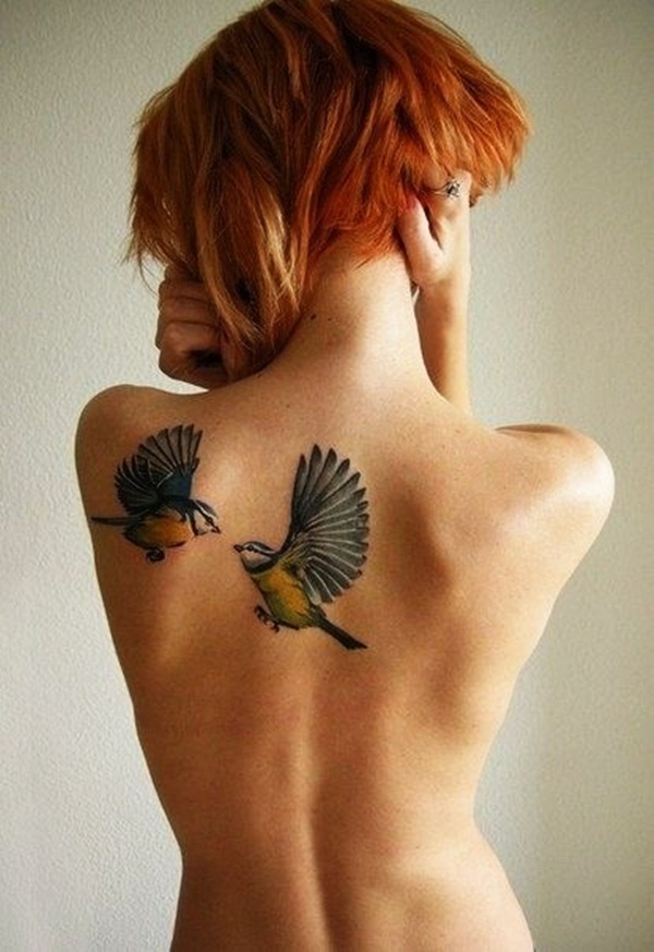 colorful birds on the back