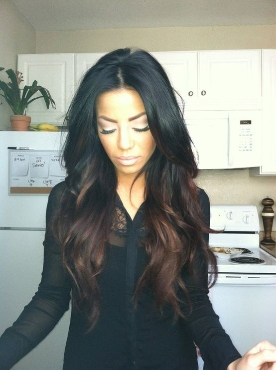 Picture Of Black Hair With Reddish Brown Highlights