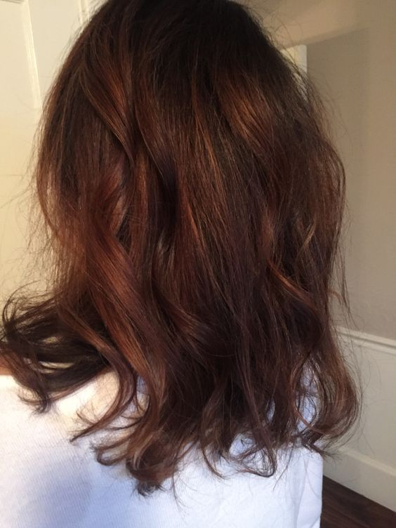 dark hair with chestnut hues looks warm and rich