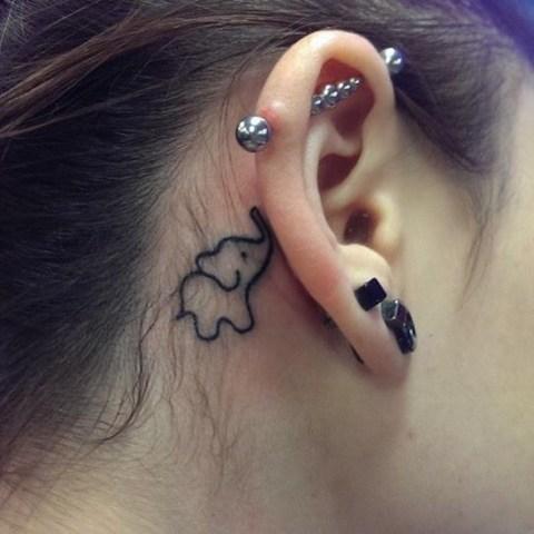 Small elephant behind the ear