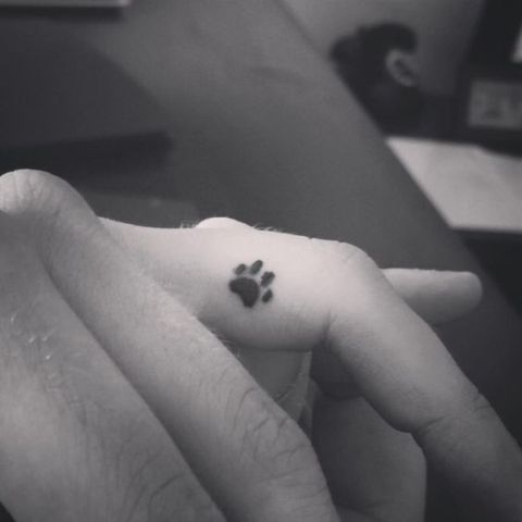 Small paw tattoo