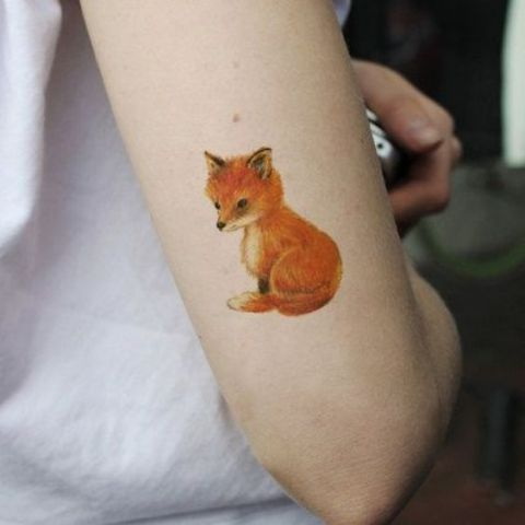 Baby fox tattoo on the arm
