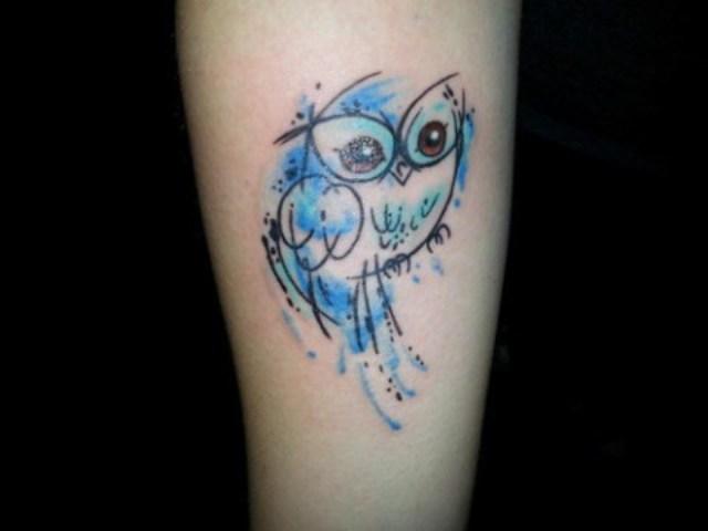 Blue owl on the arm