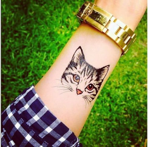 Cool cat tattoo on the arm