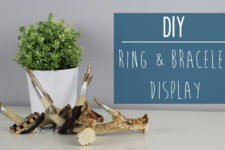DIY ring and bracelet display from antlers