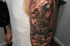 Beautiful lion on the arm