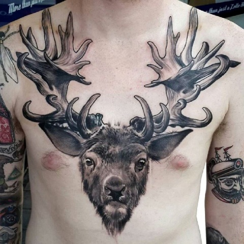 Deer tattoo on the chest