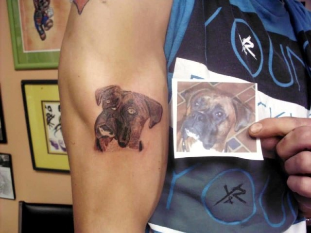 Dog face tattoo on the arm