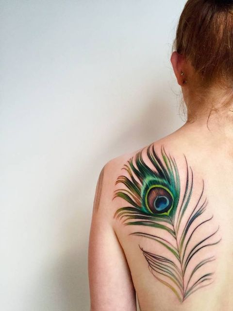 Gorgeous peacock feather on the back