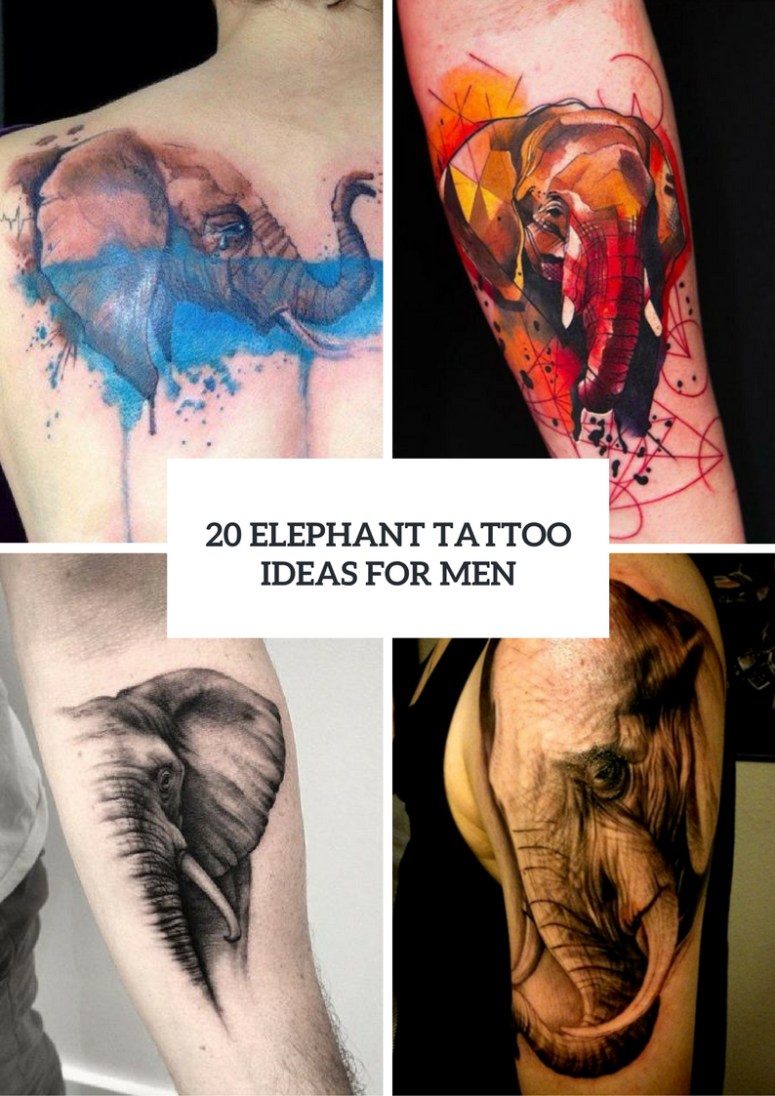 20 Men Elephant Tattoo Ideas To Repeat