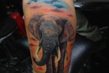 Elephant and sky tattoo