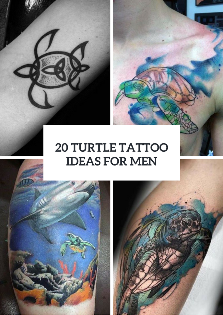 20 Interesting Turtle Tattoo Ideas For Guys