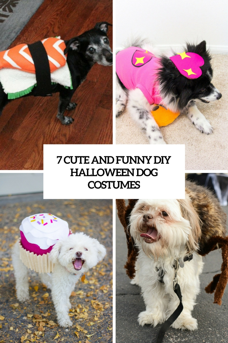 7 funny and cute diy halloween dog costumes cover : funny dog costumes  - Germanpascual.Com