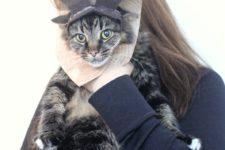 DIY moose wall-mounted head costume