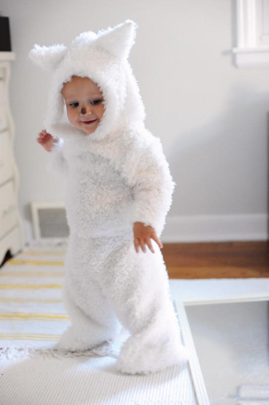 DIY white wolf costume (via www.rustandsunshine.com)