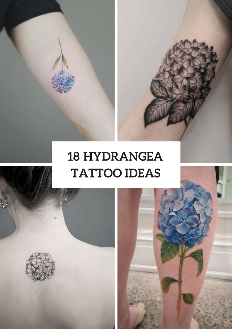 Hydrangea Tattoo Ideas For Romantic Ladies