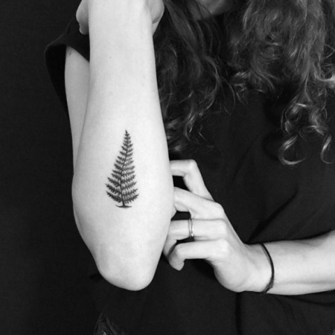 Fern leaf tattoo on the forearm