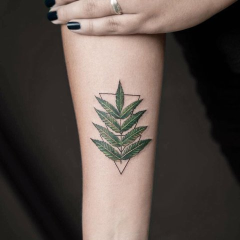 Green leaf tattoo on the arm