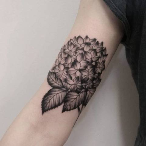 Hydrangea with leaves tattoo