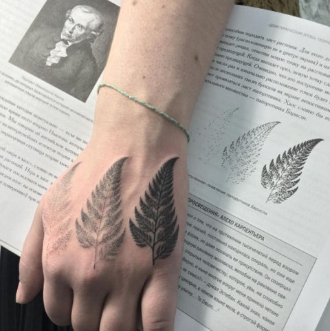 Three ferns tattoo on the hand