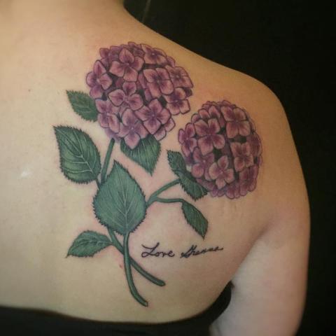 Two hydrangeas tattoo on the shoulder