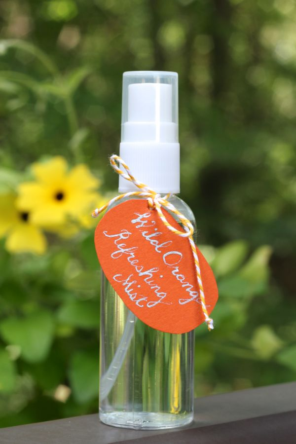 DIY face mist with refreshing essential oils (via www.alyssaandcarla.com)