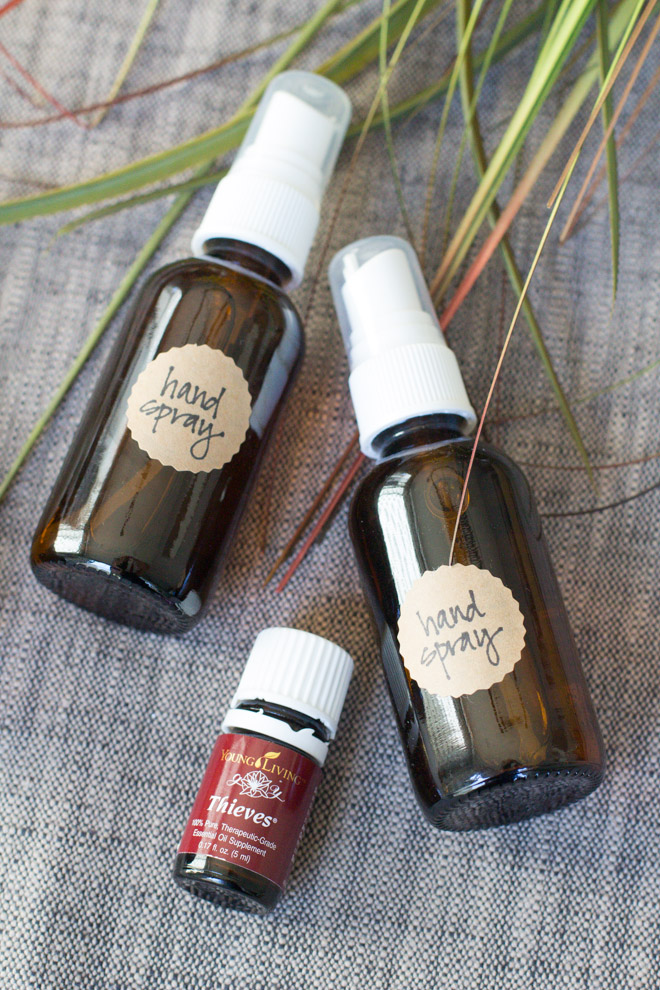 DIY hand sanitizer spray of 3 ingredients (via www.modishandmain.com)