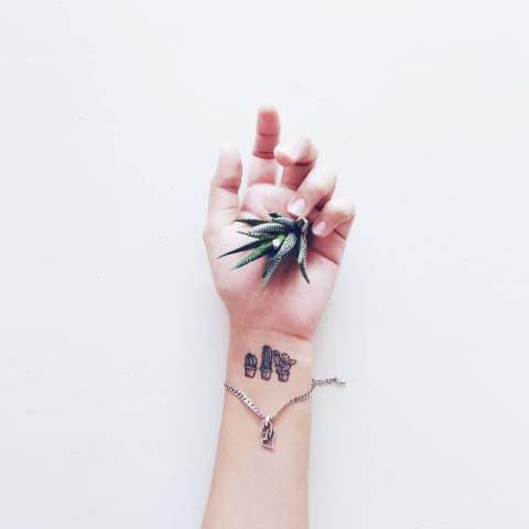 Cute cactus tattoos on the wrist
