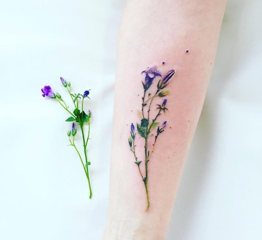 Realistic tattoo idea on the forearm