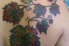Grape leaves tattoo on the shoulder and back
