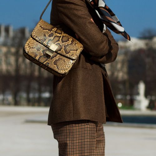 a classic box bag of snake print leather in such a natural color combines trends and timeless designs