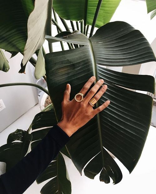 two statement rings - a cricle one and a wide thick polished gold one for a modern and bold look