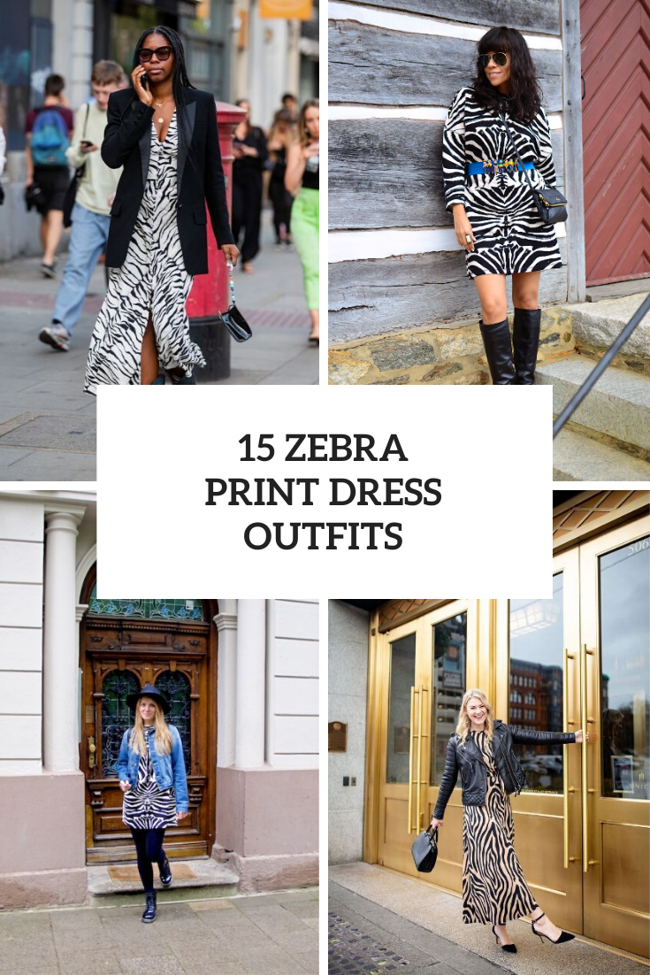 Fabulous Outfits With Zebra Print Dresses