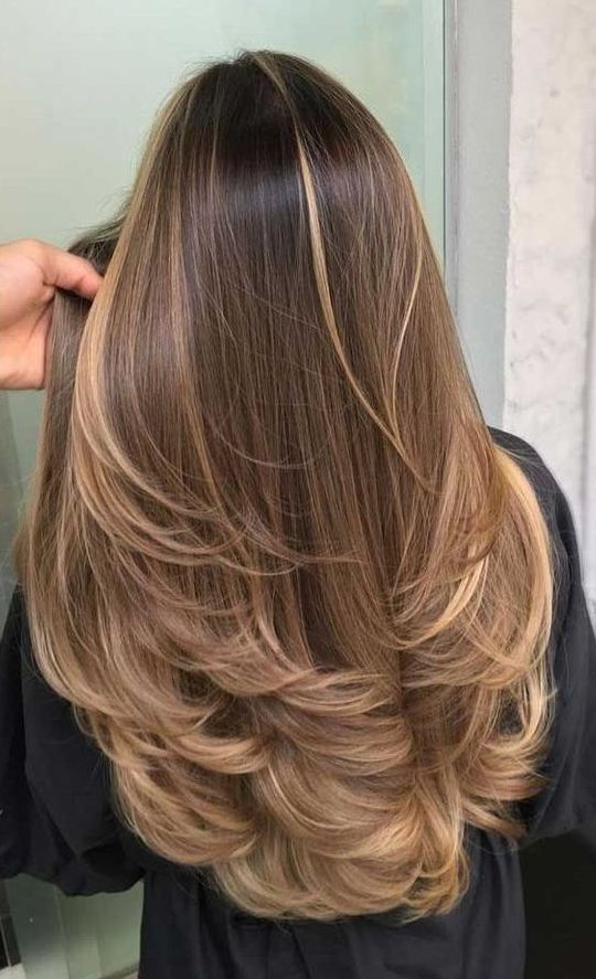 long brown hair with long sunkissed and mushroom blonde balayage and a bit of ombre is very cool