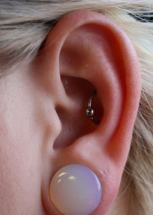 a conch orbital piercing with 16 gauge captive bead ring is a bold solution to stand out