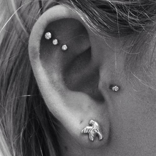 chic ear styling with a triple flat, a tragus and a lobe piercing, with matching rhinestone studs and a bird stud