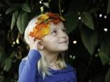 Cool Autumn Idea of DIY Fall Leaf Crown2