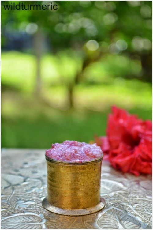 moisturizing hibiscus hair mask (via wildturmeric)