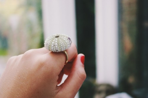urchin ring (via sassystreet)