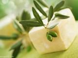 vegain olive oil soaps