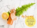 face mist for dry skin