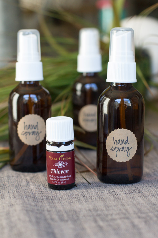 Picture Of diy hand sanitizer spray from 3 ingredients  5