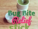 bug bite relief stick with oils