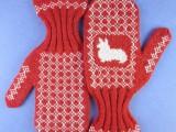 corgi mittens